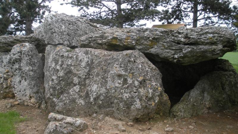 Megalithe - Loire Dscn3021