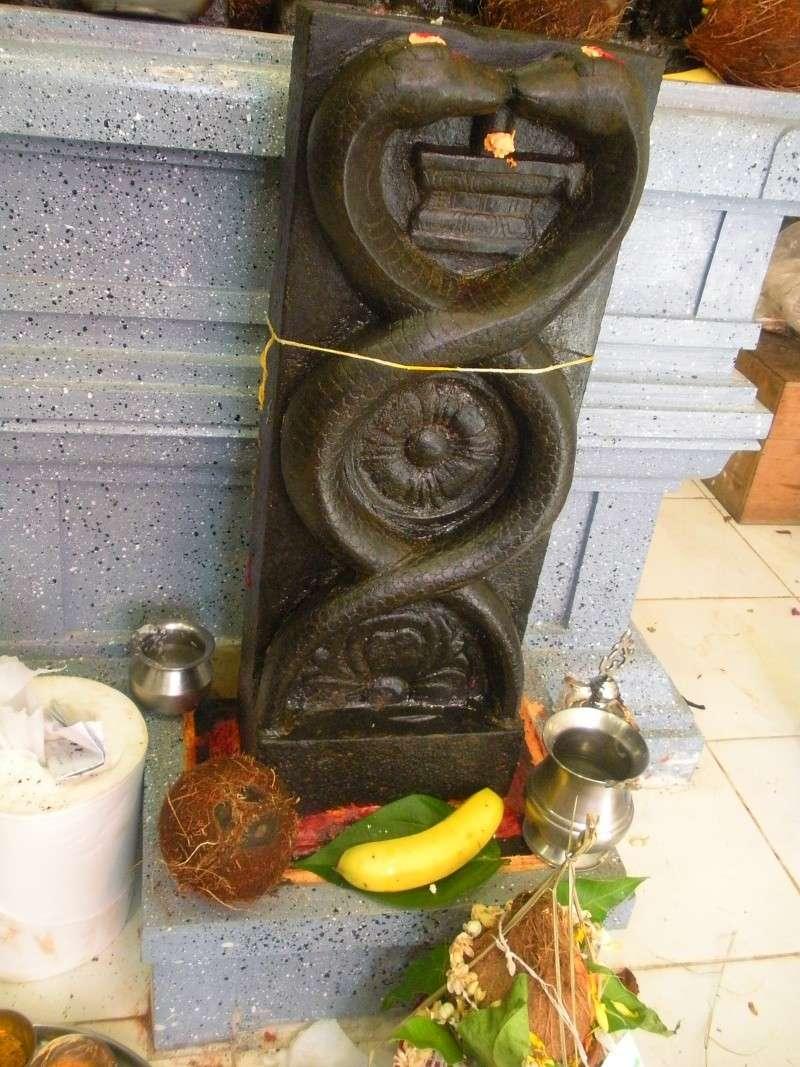Photos du Maha Kumbhabhishekam Dscn4914