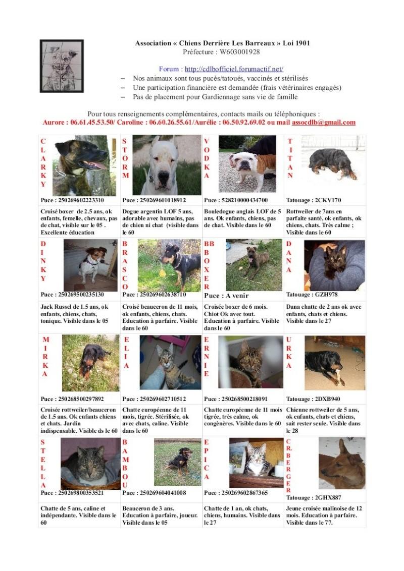Nos plaquettes mensuelles pour diffusion - Page 2 Affich17