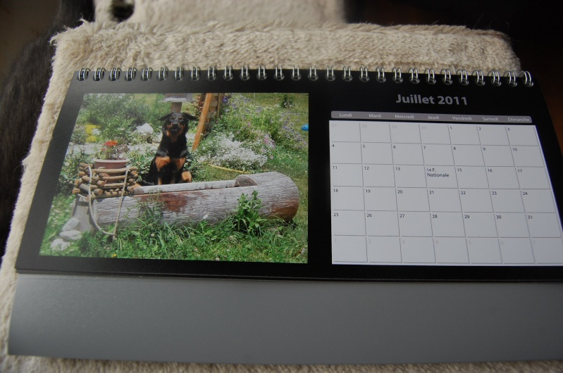 Calendriers CDLB 2011 Cheval12
