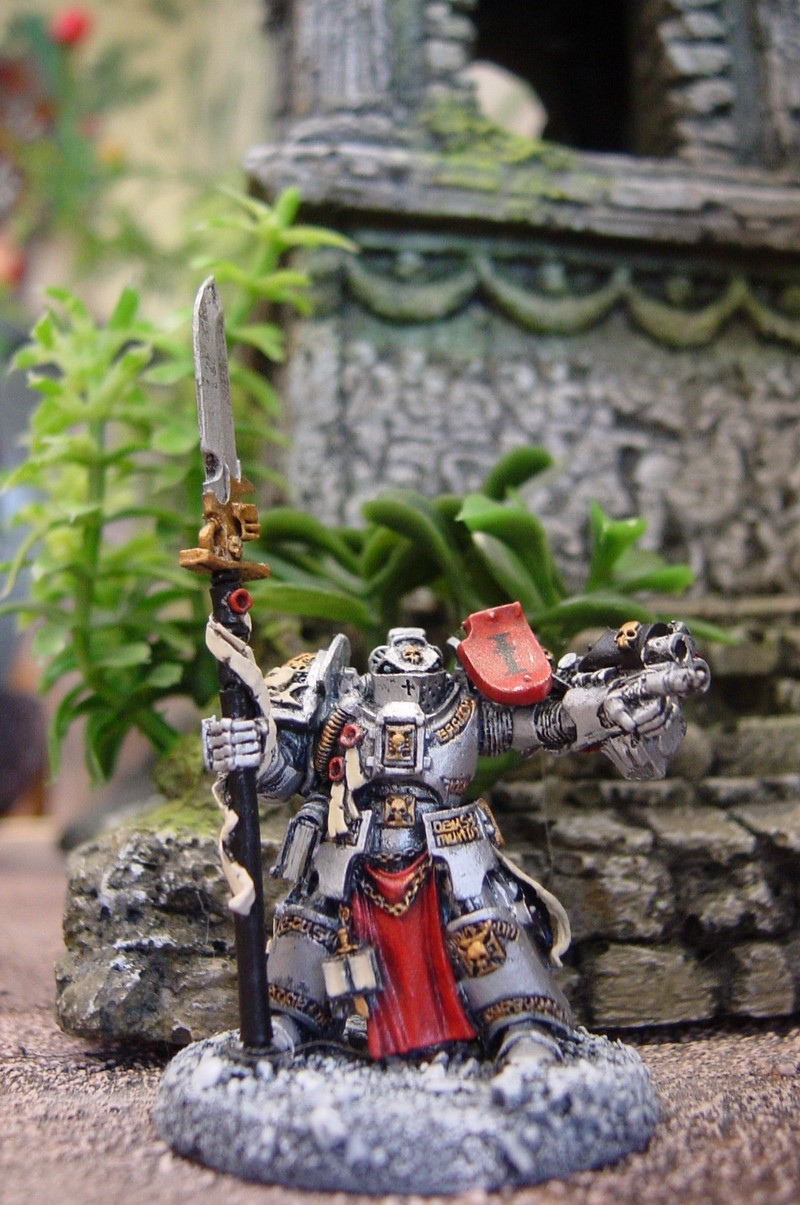 Iron Templar Dsc00010