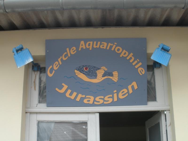 petit sondage pour décor du local.. Aquaju13