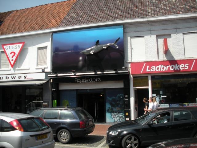 Un dimanche en Belgique Gizia_70