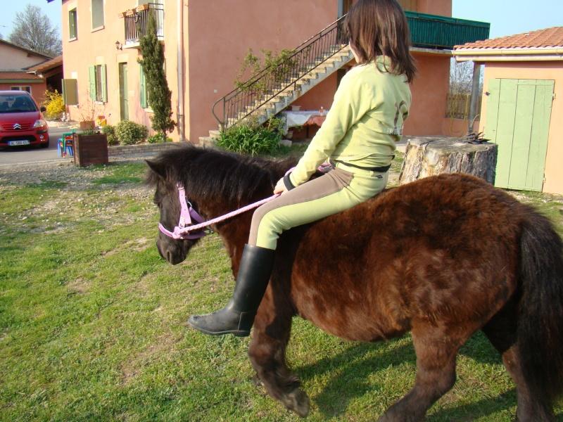 KIWI et CAPUCINE (décédée) - ONC poney présumées nées en 1990 - adoptées en octobre 2008 par caro38 - Page 2 Dsc07112