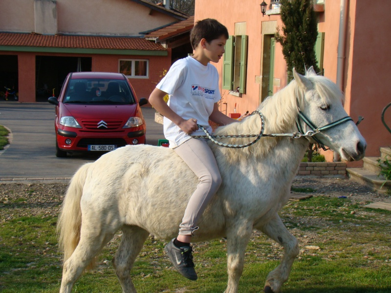 KIWI et CAPUCINE (décédée) - ONC poney présumées nées en 1990 - adoptées en octobre 2008 par caro38 - Page 2 Dsc07115