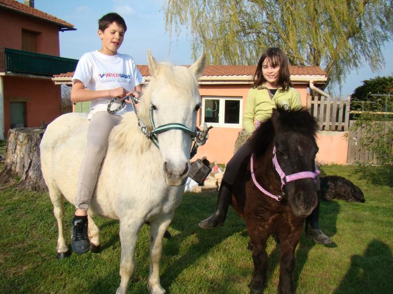 KIWI et CAPUCINE (décédée) - ONC poney présumées nées en 1990 - adoptées en octobre 2008 par caro38 - Page 2 Dsc07116