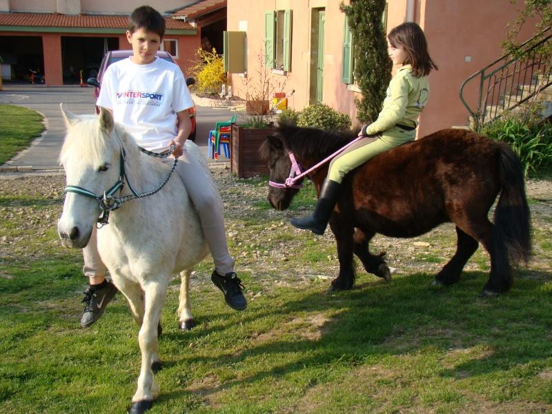 KIWI et CAPUCINE (décédée) - ONC poney présumées nées en 1990 - adoptées en octobre 2008 par caro38 - Page 2 Dsc07119