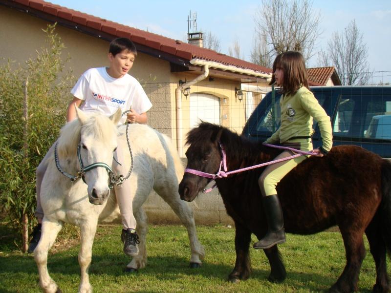 KIWI et CAPUCINE - ONC poney présumées nées en 1990 - adoptées en octobre 2008 par caro38 - Page 2 Dsc07210