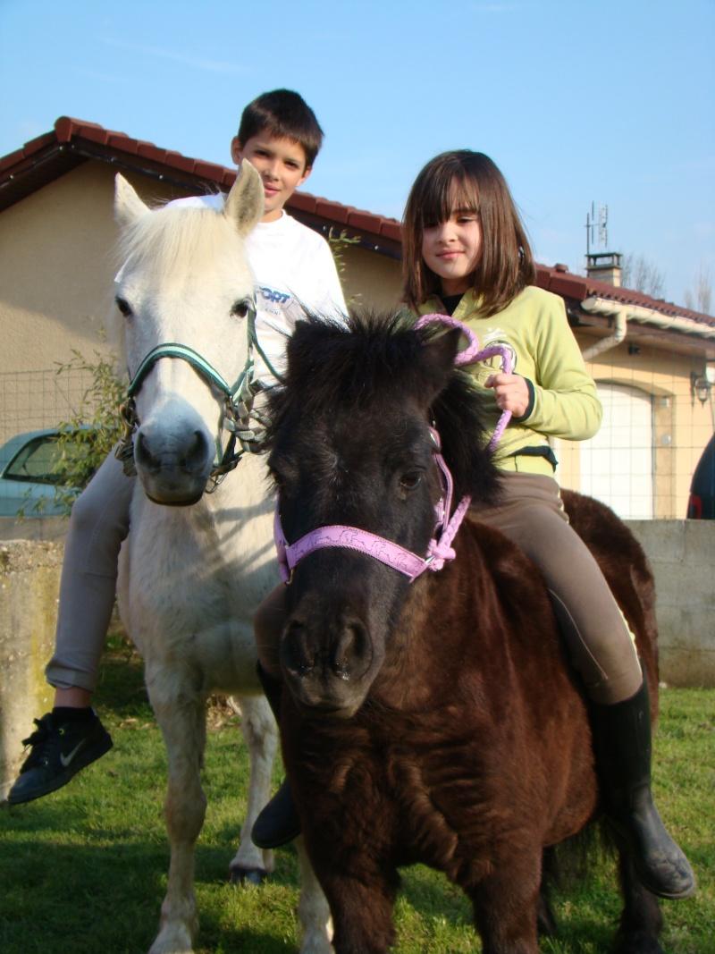 KIWI et CAPUCINE (décédée) - ONC poney présumées nées en 1990 - adoptées en octobre 2008 par caro38 - Page 2 Dsc07211