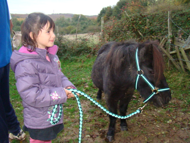 KIWI et CAPUCINE - ONC poney présumées nées en 1990 - adoptées en octobre 2008 par caro38 - Page 2 Dsc09511