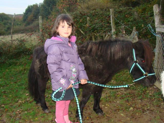 KIWI et CAPUCINE (décédée) - ONC poney présumées nées en 1990 - adoptées en octobre 2008 par caro38 - Page 2 Dsc09512