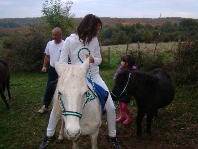 KIWI et CAPUCINE (décédée) - ONC poney présumées nées en 1990 - adoptées en octobre 2008 par caro38 - Page 2 Dsc09517