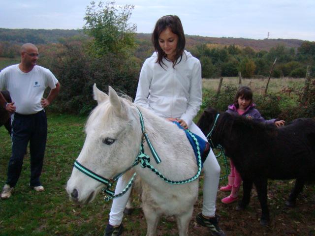KIWI et CAPUCINE - ONC poney présumées nées en 1990 - adoptées en octobre 2008 par caro38 - Page 2 Dsc09518