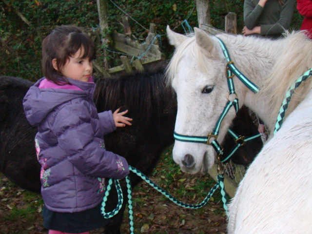 KIWI et CAPUCINE - ONC poney présumées nées en 1990 - adoptées en octobre 2008 par caro38 - Page 2 Dsc09519
