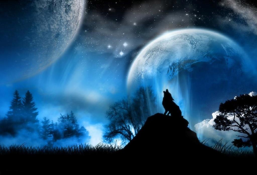 Ω Forum de l'alliance Meute de Loups Ω