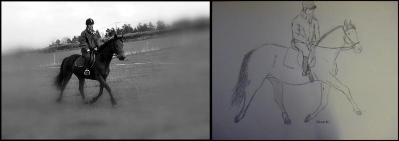 Propose de dessiner gratuitement vos chevaux !  39244_10