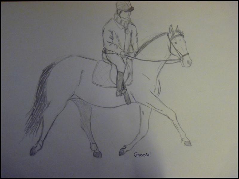 Propose de dessiner gratuitement vos chevaux !  - Page 4 P1070015