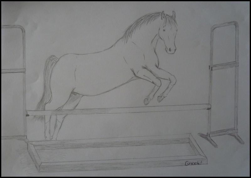 Propose de dessiner gratuitement vos chevaux !  - Page 4 P1070016