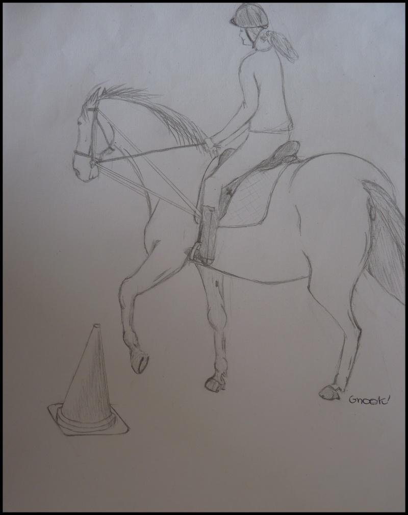 Propose de dessiner gratuitement vos chevaux !  - Page 4 P1070017