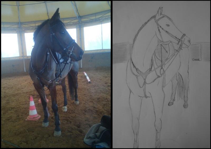 Propose de dessiner gratuitement vos chevaux !  Tu_bmp10