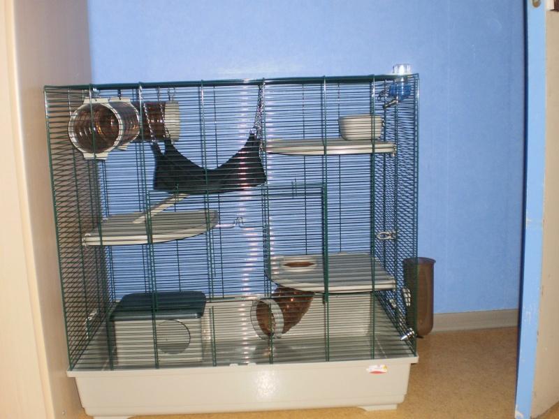 Ma cage P2100011