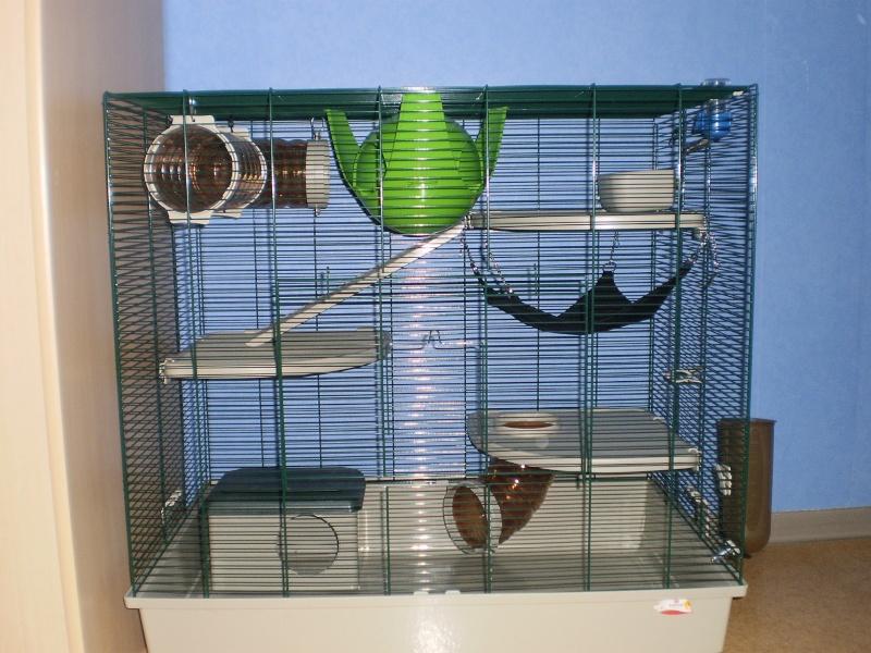 Ma cage P2140012