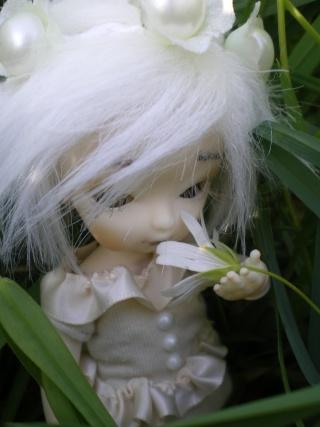 "Salomé, Obitsu 11cm [New ! ""Nature Morte"" P.2] Imgp0022"