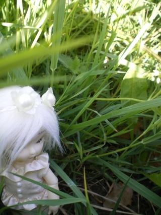 "Salomé, Obitsu 11cm [New ! ""Nature Morte"" P.2] Imgp0023"