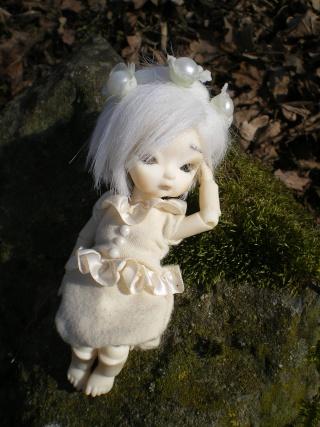 "Salomé, Obitsu 11cm [New ! ""Nature Morte"" P.2] Imgp0031"