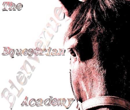 Equestrian Academy Bienve10