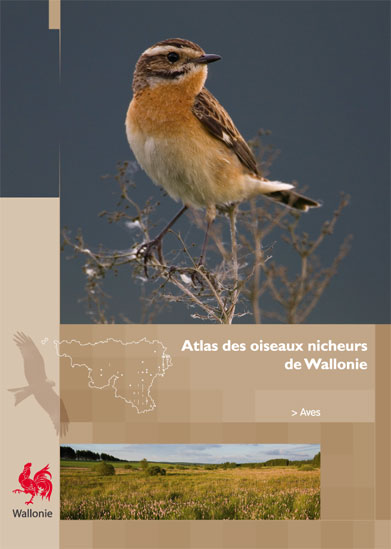 Le premier Atlas des oiseaux nicheurs de Wallonie est sorti  Atlas_10