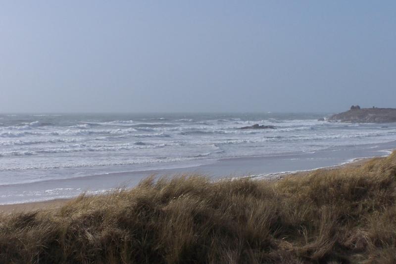 Bord de mer en Morbihan après la tempête de la nuit dernière 100_6811