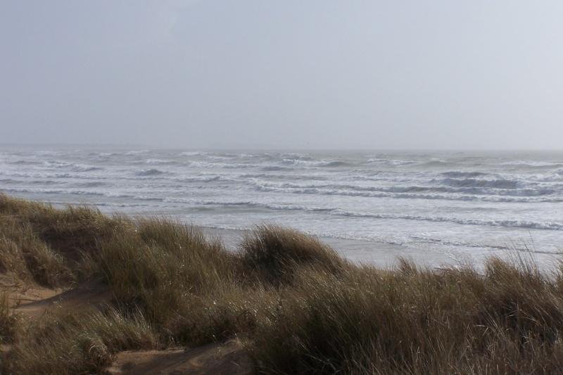 Bord de mer en Morbihan après la tempête de la nuit dernière 100_6812