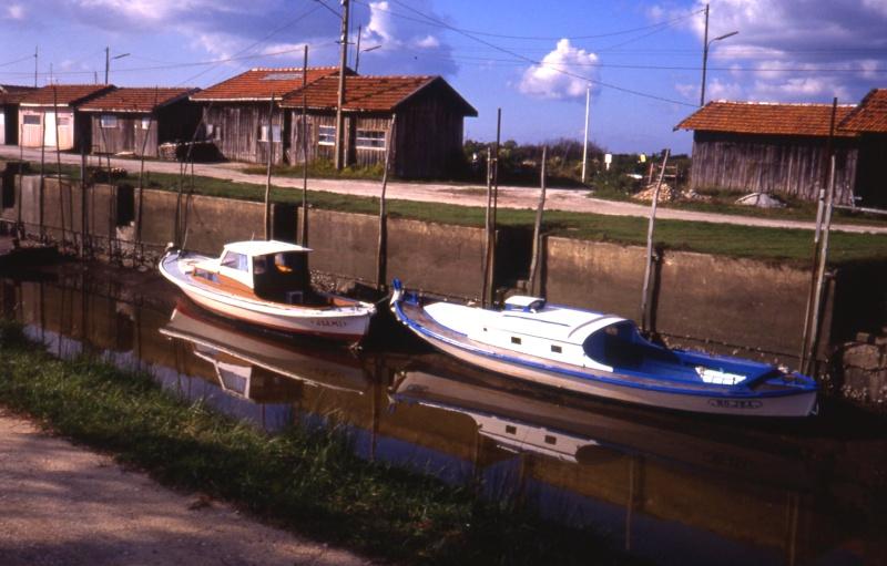 Rives du Médoc et Bassin d'Arcachon en 1990 1990_b11
