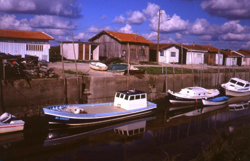 Rives du Médoc et Bassin d'Arcachon en 1990 1990_b12