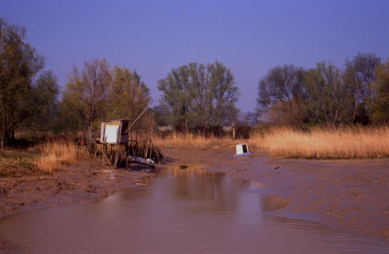 Rives du Médoc et Bassin d'Arcachon en 1990 1990_g10