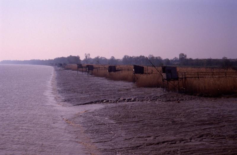 Rives du Médoc et Bassin d'Arcachon en 1990 1990_g12