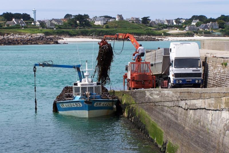 Les métiers de la mer  : les Goémoniers de Portsall 29port11