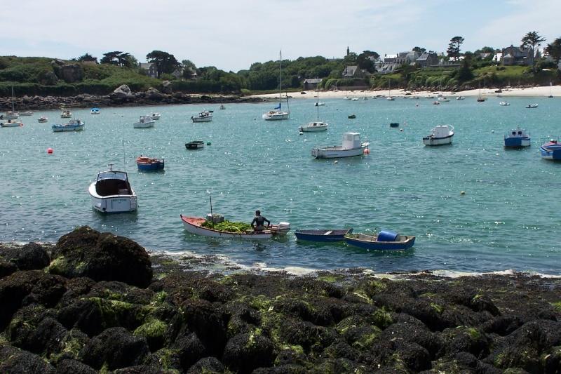 Les métiers de la mer  : les Goémoniers de Portsall 29port12