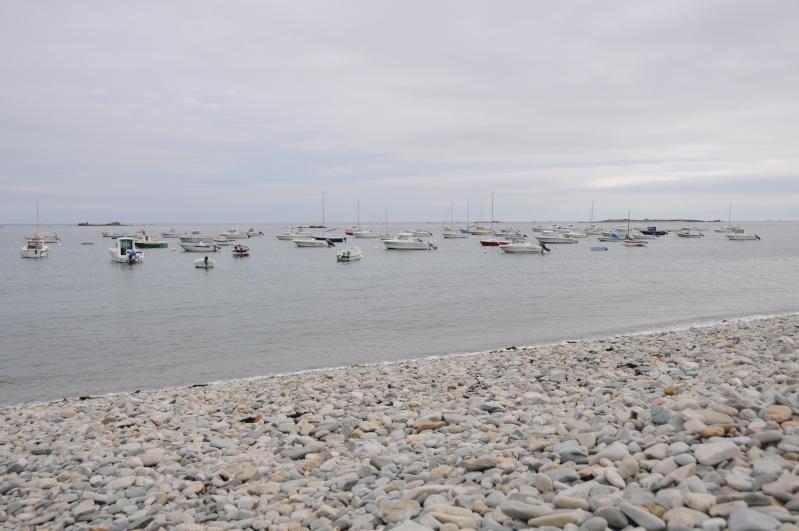 Bord de mer en Côtes d'Armor Dsc_8010
