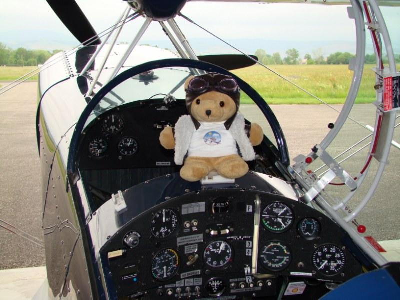 Les vols de la mascotte - Page 5 Dsc04212