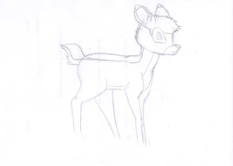 Pas à pas bambi Choupinou' Hp000311