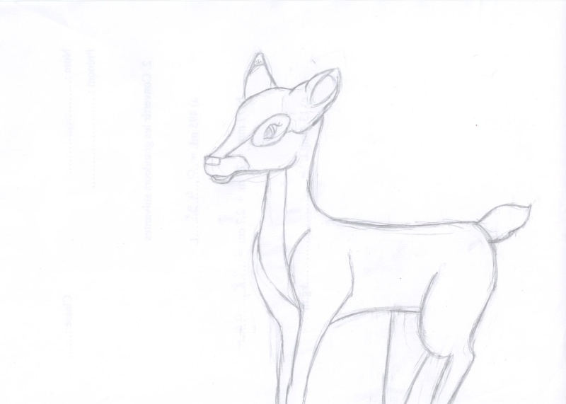 Pas à pas bambi Choupinou' Hp000410