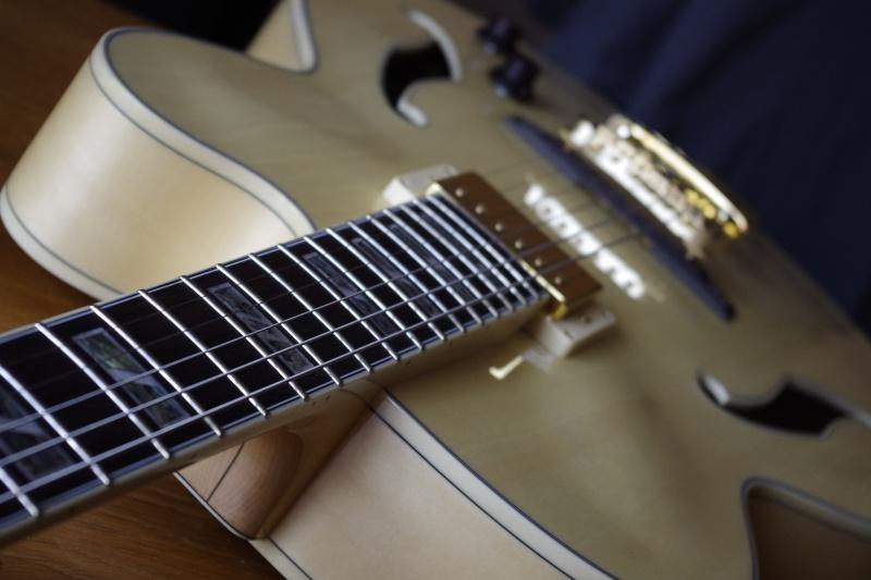 Photos de vos guitares. - Page 38 _igp0214