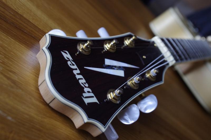 Photos de vos guitares. - Page 38 _igp0215
