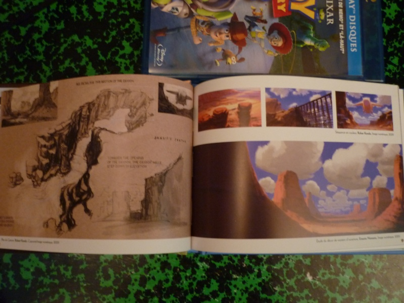 [BD + DVD] Toy Story 3 (17 novembre 2010) - Page 13 P1020314