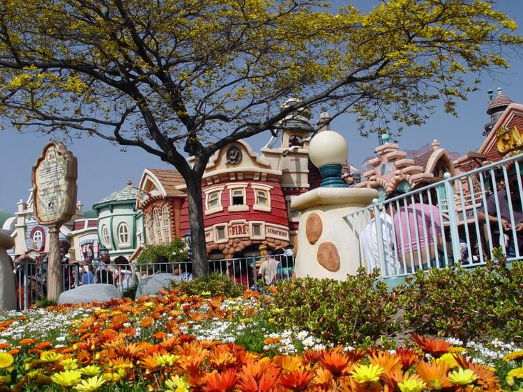 Magic Kingdom - Walt Disney World  0_mick10