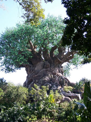 Disney's Animal Kingdom à Walt Disney World Resort 100_1512
