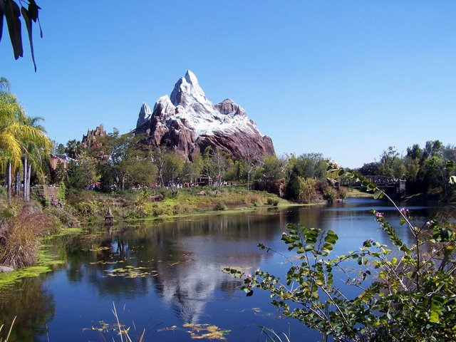 Disney's Animal Kingdom à Walt Disney World Resort 100_1533