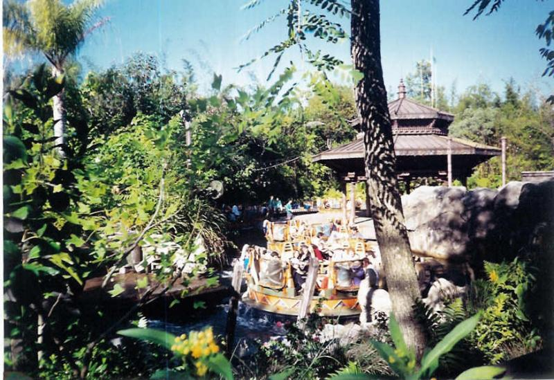 Disney's Animal Kingdom à Walt Disney World Resort 11863010